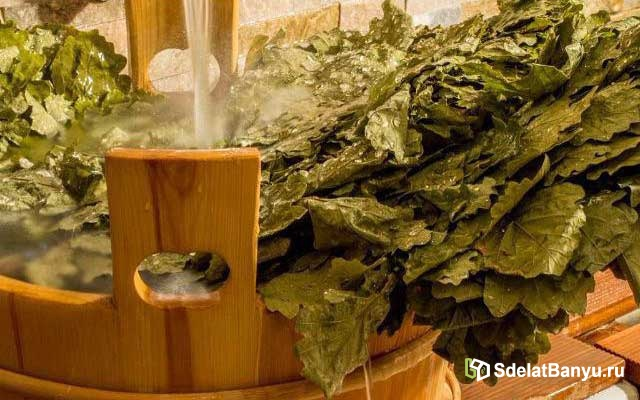Как правильно запарить веник для бани: березовый, дубовый и другие разновидности